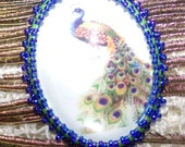 Glass Photo Peacock Cabochon - #KG