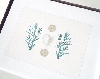 Blue Coral, Sea Urchin & Heart Shell Naturalist Collection Fine Art Archival Print