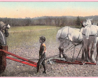 "Ca. 1916 ""A Horse Drawn Plow"" near Brownsville, PA Topographical Picture Postcard - 192"