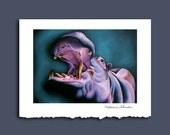 Hippo Hurray Greeting Card by Alicia Wishart