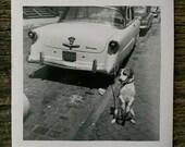 Original Vintage Photograph Turbo Dog