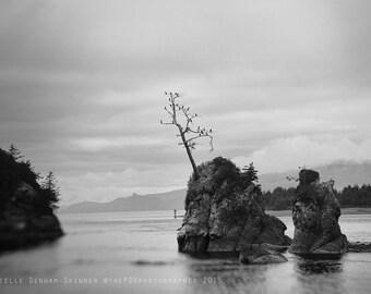 Beach Photography | Black and White | Oregon Coast | Cormorants | Travel Photo | Peaceful | Ocean | Sea | Rockaway Beach