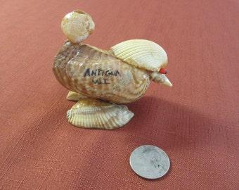 Shell Art Bird Kitsch Antigua Handmade Folk Art