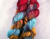 Jay on Lolo 75/25 SW Merino Nylon Hand dyed fingering weight sock yarn