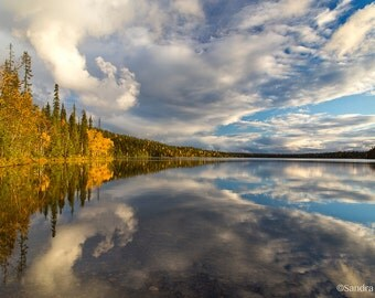 Beautiful golden yellow birches autumn reflection photo print of very typical Finnish lake, Lapland, nature decor, large wall art