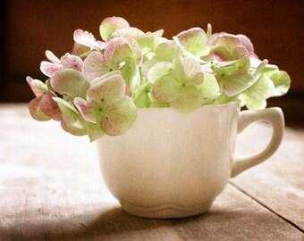 Flower Photography, Hydrangea Wall Art, Rustic Farmhouse Decor, Kitchen Decor, Soft Pink Botanical Print   'Early Light'