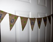 Go Hawks Burlap Bunting Banner - Seattle Seahawks Football - Blue and Lime Green Polka Dots - Party Decoration, Tailgating