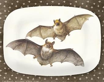 Bats II melamine Platter