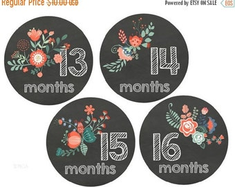 Sale Baby Monthly Stickers Second Year Stickers 13-24 Month Stickers