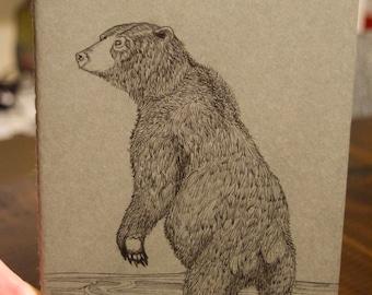 bear notebook