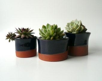 Ceramic Succulent Planter, Cactus Planter, Office Decor, Ceramic Bowl, Ceramic Cup, Organic Shape in Dark Blue and Brown by Cecilia Lind