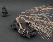 Wire Sculpture Windswept Canary Island Pine Tree on Black Lava Stone
