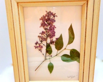 Purple Pressed Flower Art: A Simple Setting