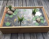 Beautiful Miniature Koi Pond in Bamboo