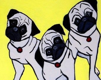 Head Tilt 3 Pugs Dog Puppies 12 x 12