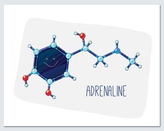 Adrenaline Epinephrine Molecule / chemistry / Wall art print / biology /science / blue / red / nursery / scientist / whimsical / atoms