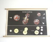 Vintage. Pull down chart. Mid Century. Educational. German DDR. Physics. School. Science. Poster. Canvas. Splitting the atom (308)