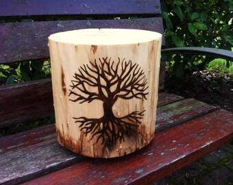Tree trunk wood life