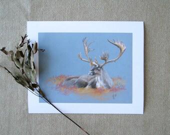 Print Caribou