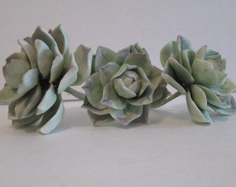succulent cactus sugar gum paste edible cake topper