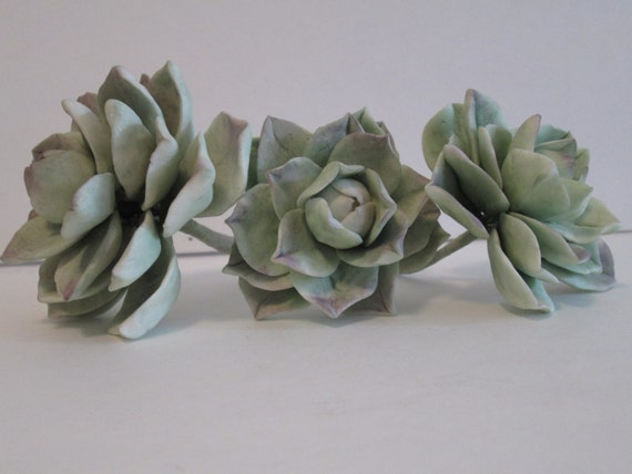 Succulent Cactus Sugar Gum Paste Edible Cake Topper
