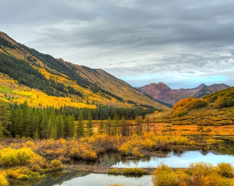 Fall, Autumn, Leaves, Aspens, Colorado, Wall Art, Colorado Photography, Mountains, Fine Art Photography, Landscape, Cabin Decor