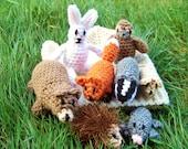 The Mitten by Jann Brett, mitten, bear, fox, mouse, badger, hedgehog, mole, bunny, owl