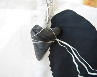 SHARK TOOTH sea bag from recycled sail cloth one of a kind custom signature bag