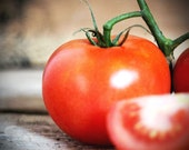 On the vine - Original Fine Art Photograph (garden, farmer, tomatoes, vegetables, farmers market)