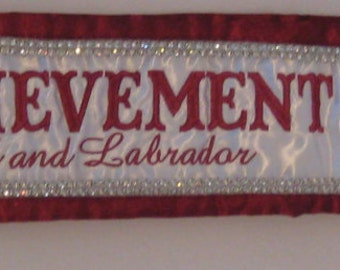 Custom Beauty Pageant Sashes with a Double Row of Rhinestones