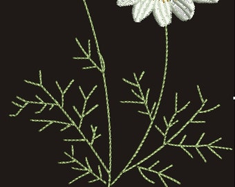 camomile Embroidery Design - Instant Download