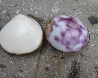 Genuine Sea Shell Trinket box coin purse set of two
