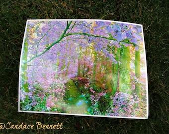 Wonderland (Fine Print)