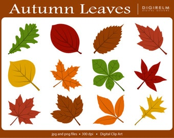 Autumn Leaves Clipart - Digital Printable Clip Art