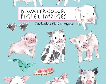 CLIP ART- Watercolor Piglets Set. 15 Images. Digital Download. Pig. Pink. Animal.