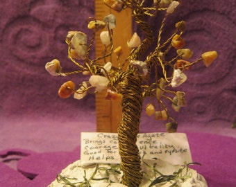 HEALING  TREE--CRAZY Lace Agate Stones