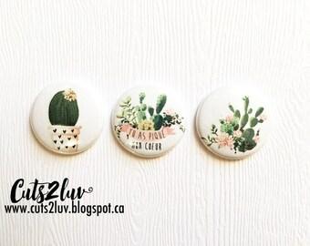"""3 badges 1 """"Cactus"""