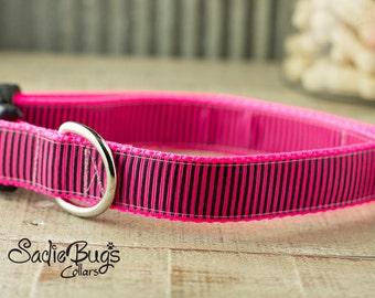 Hot pink stripes dog collar, pin stripe dog collar, modern dog collar, colorful dog collar