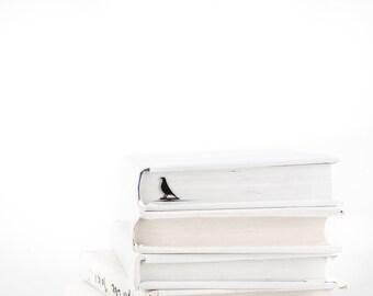 Metal book Bookmark Eames bird // unique design bookmark // stylish unique present for a book lover // Free shipping // design icon