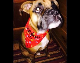 Dog Bandana Personalized with any name