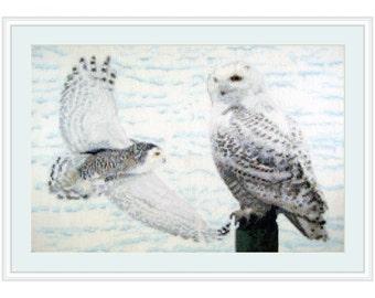 Cross Stitch Kit Land of Snow, snowy owls