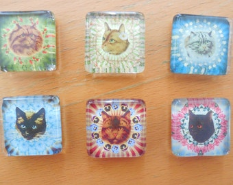 Animal Magnetism Cat Magnets! -  (set 1) - 1 inch Glass Tile magnets, cats and flowers