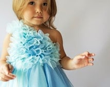 Aqua & Blue Tulle Dress with frilly one shoulder bodice.