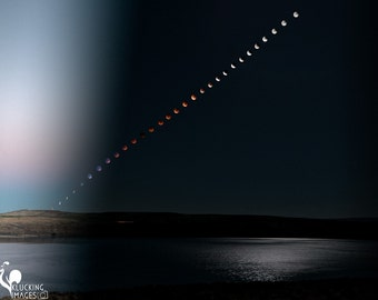 Rising Lunar Eclipse, Eclipsed Supermoon Rising