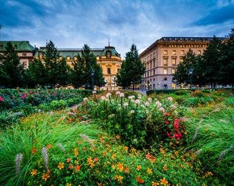 Gardens at Kungsträdgården and buildings on Kungsträdgårdsgatan, Norrmalm, Stockholm, Sweden - Photography Fine Art Print or Wrapped Canvas