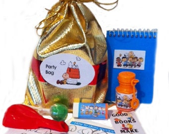 Snoopy & Charlie Brown party bag loot bag with 8 items inside