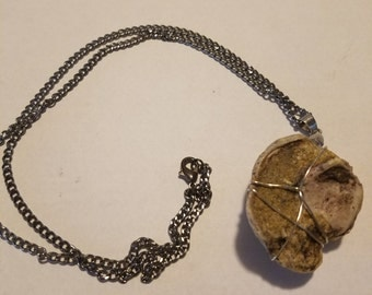 Clam/Mollusk fossil cluster necklace