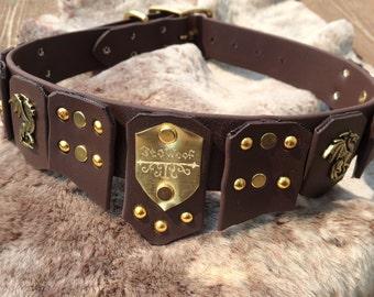 Biothane Dog Collar Medieval Inspired