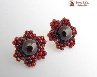 SaLe! sALe! Vintage Bohemian Garnet Screw Back Earrings
