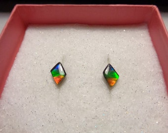 Ammolite Jewelry Earrings -  Outstanding  Studs with S/S posts
